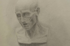 Flayed head - Pencil on paper